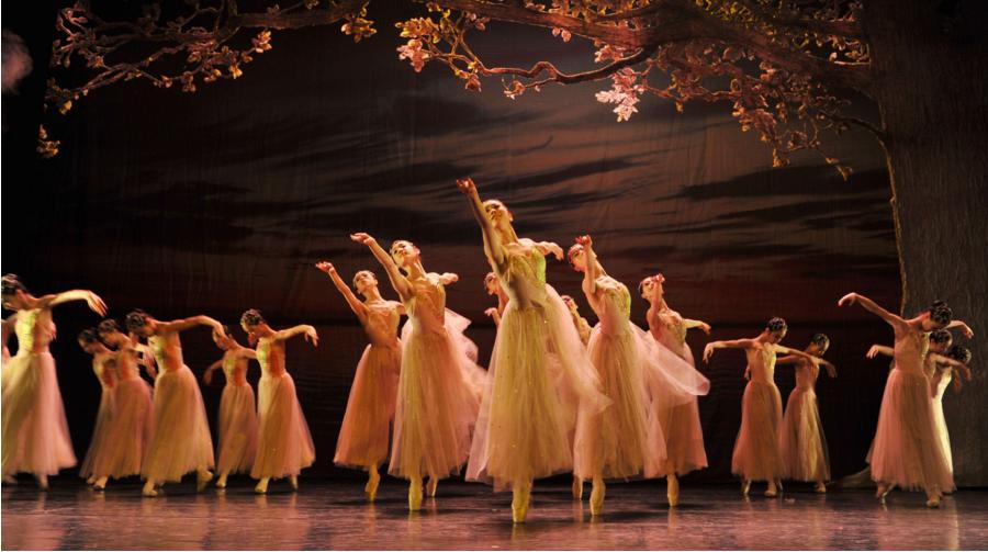 舞蹈艺考生怎样选专业和院校才不吃亏?