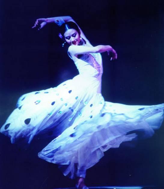 不是因为美丽而舞蹈,而是因为舞蹈才美丽